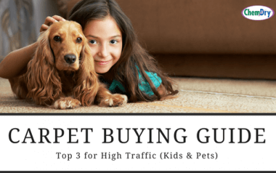 Carpet Guide: Top 3 for High Traffic