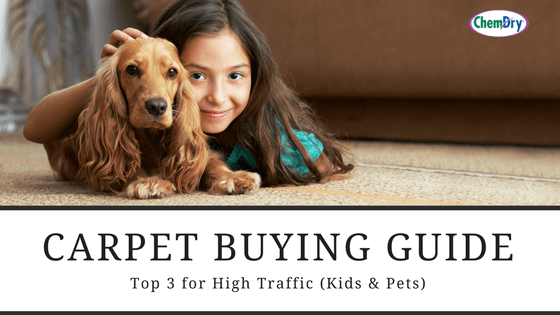Carpet guide top 3 for high traffic for Carpet buying guide