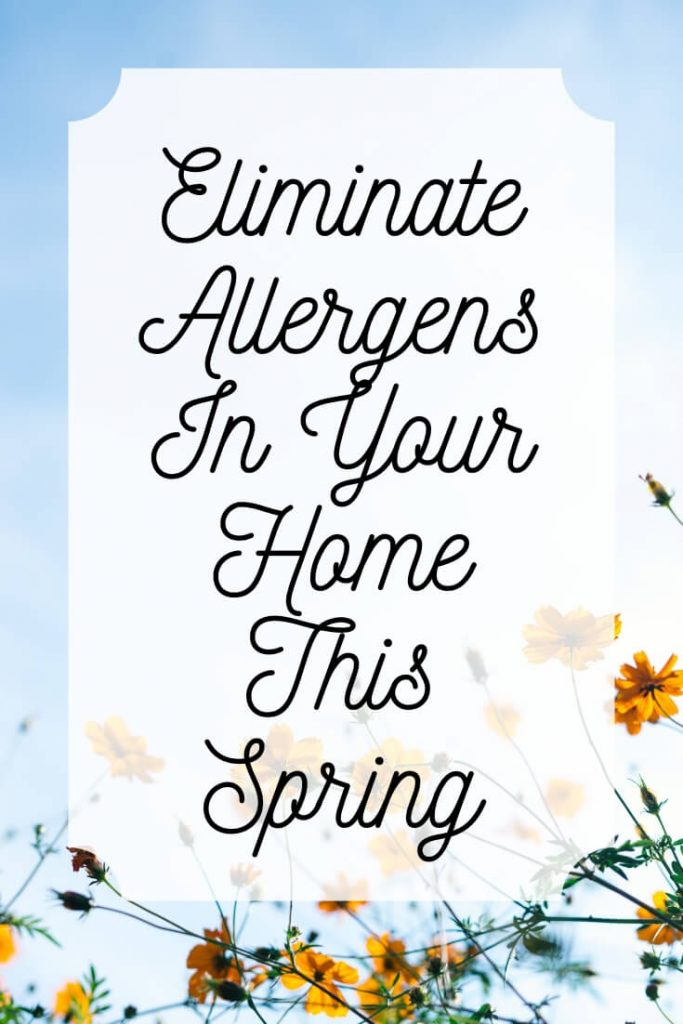 spring cleaning vs allergens blog